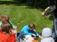 Picknick auf dem Durie Hill in Wanganui