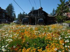 Talstation der Heavenly Gondelbahn bei South Lake Tahoe