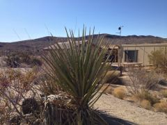 Cottonwood Visitor Center im Joshua Tree N.P.