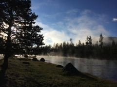 Morgens um 8 Uhr am Madison River im Yellowstone