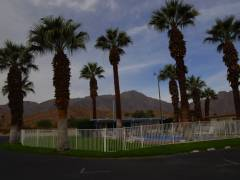 Standlunds Inn in Borrego Springs am Morgen